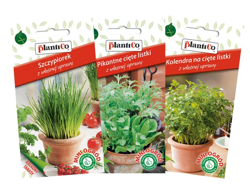 Konkurs Własne Warzywa Z Doniczki Lub Balkonu To Prostsze